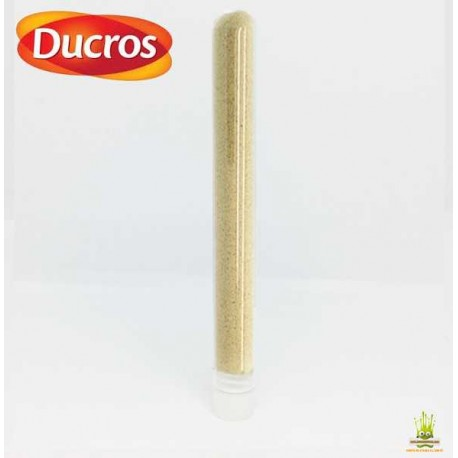 Tube de Gingembre moulu DUCROS 2gr.